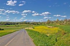 Prigorje region spring lanscape road Royalty Free Stock Photo