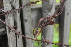 Prikkeldraad op een houten omheining Close-up, de zomer groene achtergrond Stock Foto
