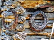 Prikkeldraadbroodjes die op de Close-up van de Blokhuismuur hangen Royalty-vrije Stock Foto's