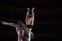 Prima ballerina dancing Stock Images