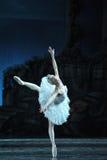 Prima Ballerina Staring an der Reflexion im Wasser Lizenzfreies Stockfoto