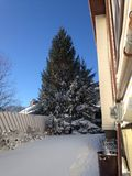 Prima bufera di neve Fotografia Stock Libera da Diritti