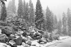 Prima caduta della neve della stagione Fotografia Stock