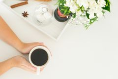 Prima colazione con i cereles Immagini Stock