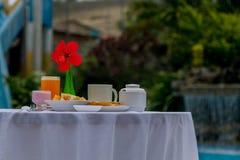 Prima colazione davanti allo stagno immagine stock