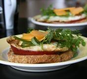 Prima colazione del panino del formaggio dell'uovo Fotografia Stock Libera da Diritti