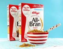 Prima colazione della fibra dell'alimento salutare di dieta sana alta Fotografia Stock Libera da Diritti