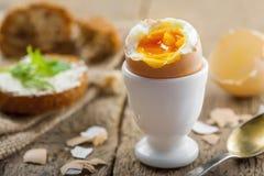 Prima colazione molle dell'uovo sodo Immagine Stock