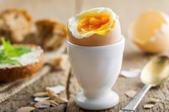 Prima colazione molle dell'uovo sodo Immagine Stock Libera da Diritti