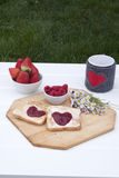 Prima colazione romantica in un giardino Fotografia Stock Libera da Diritti