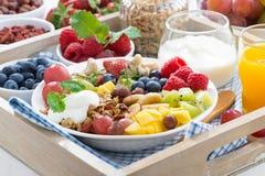 prima colazione sana - bacche, frutta fresca e cereale Fotografie Stock Libere da Diritti