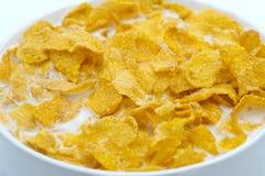Prima colazione sana di cereale con latte Fotografie Stock Libere da Diritti