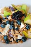 Prima colazione sana, frutti di estate fotografie stock libere da diritti