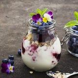 Prima colazione sana in un barattolo di vetro: yogurt, purè della bacca, intero cereale del cereale del grano, fiori commestibili Fotografia Stock Libera da Diritti