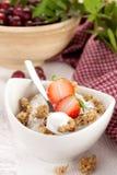 Prima colazione squisita Fotografia Stock