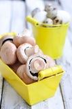 Prima colazione, uova e funghi su una tavola di legno Fotografia Stock Libera da Diritti