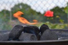 Prima del BBQ Fotografia Stock Libera da Diritti