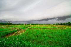 Prima della formazione di estratto delle nuvole di pioggia Fotografia Stock Libera da Diritti