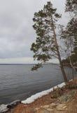 Prima neve al lato del lago Immagine Stock