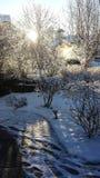 Prima neve alle prime luci Fotografia Stock