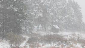 Prima neve blizzard Bagno nel villaggio video d archivio