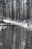 Prima neve con uno stagno Fotografia Stock