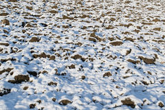 Prima neve dell'anno in un campo Fotografia Stock