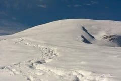 Prima neve di autunno Fotografia Stock Libera da Diritti