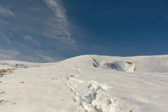 Prima neve di autunno Immagini Stock Libere da Diritti