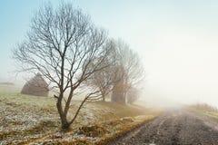 Prima neve di autunno sulla strada nebbiosa della montagna Fotografie Stock Libere da Diritti