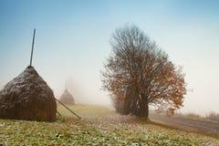 Prima neve di autunno sulla strada nebbiosa della montagna Fotografie Stock