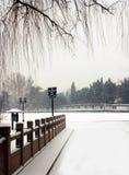 Prima neve di Pechino. immagine stock