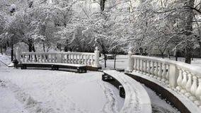 Prima neve nel parco della città immagine stock
