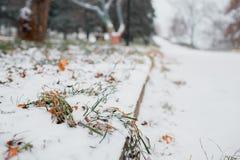 Prima neve nella città vie coperte Paesaggio urbano di autunno foglie verdi in Immagini Stock