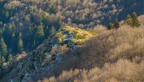 Prima neve sulle colline rocciose delle foreste della montagna di Montseny fotografia stock libera da diritti