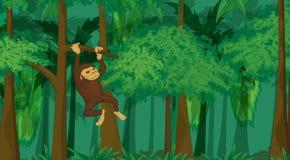 Primaat in wildernis vector illustratie