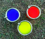 Primary colors on the grass. Blue red and yellow natural environment royalty free stock images