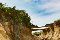 Primary Dune Erosion stock photography
