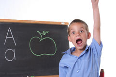 Primary school boy Stock Images