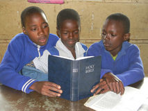 Primary school  children reading  Bible  in classroom. Royalty Free Stock Photos