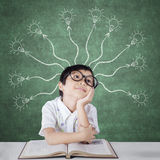 Primary school student with branchy light bulb Stock Photos
