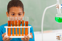 Primary student science Stock Photos