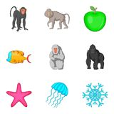 Primate icons set, cartoon style. Primate icons set. Cartoon set of 9 primate vector icons for web isolated on white background Stock Photo