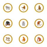 Primate icons set, cartoon style. Primate icons set. Cartoon style set of 9 primate vector icons for web design Royalty Free Stock Image