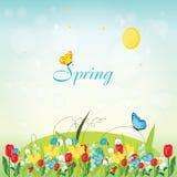 Primavera Immagine Stock Libera da Diritti