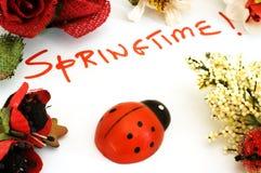 Primavera! Fotografia Stock