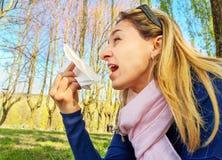 Primavera alérgica de la nariz que sopla de la alergia del polen de la fiebre de heno del estornudo foto de archivo