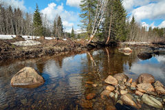 Primavera al fiume Fotografie Stock