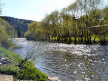 Primavera al fiume di Zschopau fotografia stock libera da diritti