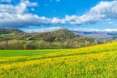 Primavera alla Toscana Fotografia Stock